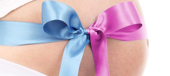 Babybauch mit Schleife in Rosa und Hellblau